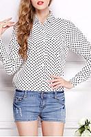 Chiffon Polo collar Polka Dot Shirt